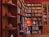 Klassieke bibliotheek met ronde elementen